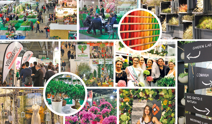 Myplant garden 2017 punta sul green business - Fiera giardinaggio ...