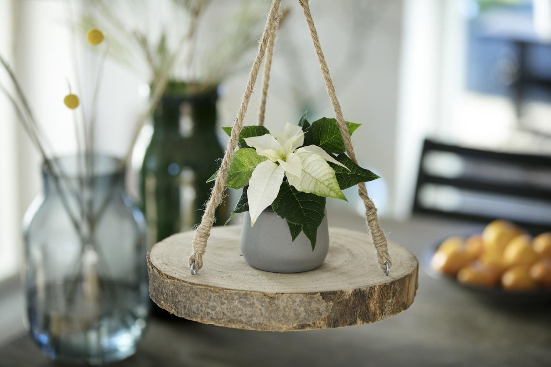Un natale di stelle 10 idee decorative di tendenza for Cerco tavolo in regalo