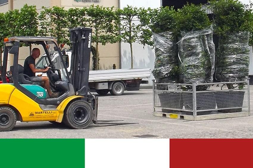 Vivaismo italiano: è ora di giocare la partita della sostenibilità. Evento digitale