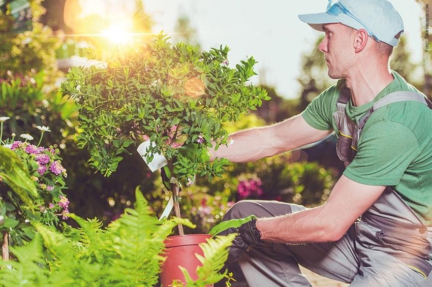 FORMAZIONE - A Monza parte un nuovo corso di Manutentore del verde