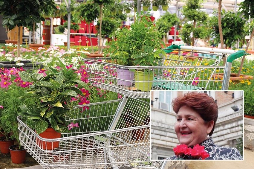 Bellanova conferma: vendita al dettaglio di fiori e piante consentita